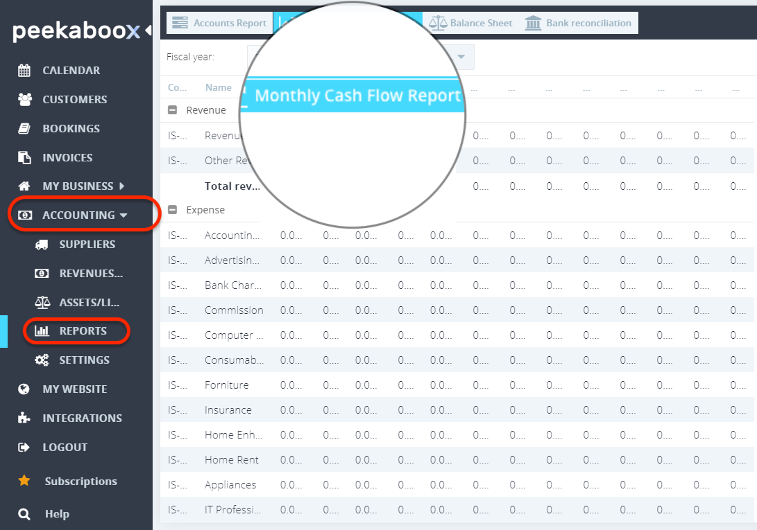 Peekaboox - Monthly Cash Flow